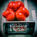 © Killzero Hitori
