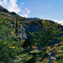 Черногория | Котор
