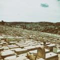 © Killzero Hitori | Jerusalem | Иерусалим. Елеонская гора